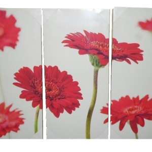 Red Gerbera Floral Canvas 3 Panel Wall Art