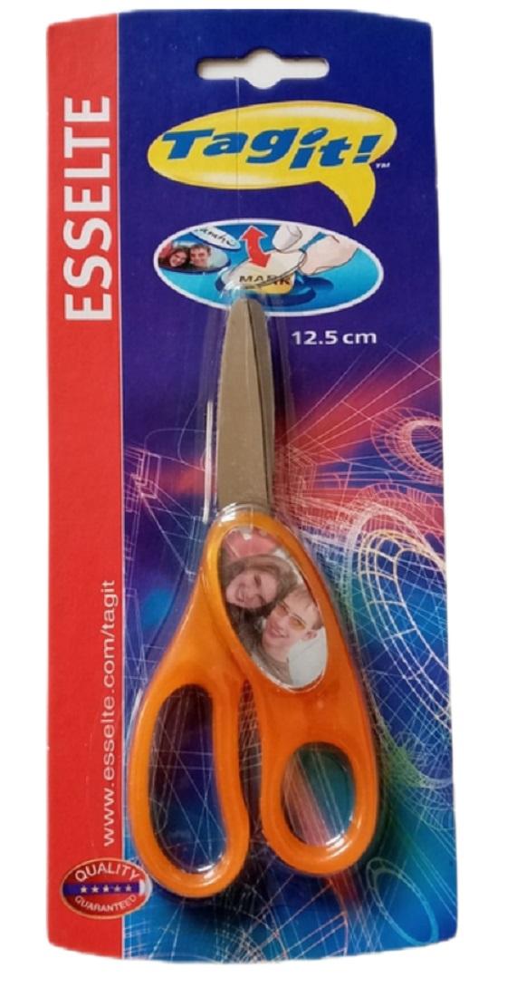 ESSELTE Tagit Craft Scissors - 12.5cm